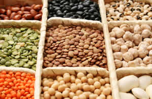 Italian Cooking Recipes - Pulses